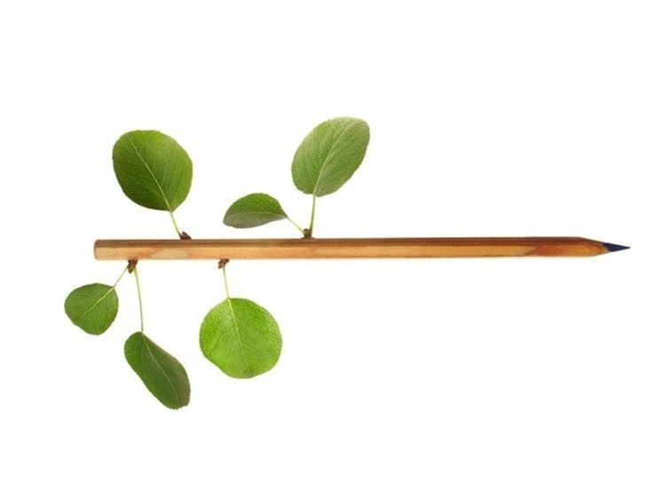 L'ecodesign è un modo ecologico, verde e rispettoso dell'ambiente per arredare la propria casa
