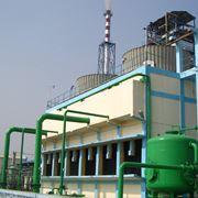 Le centrali a biomasse sono molto contestate