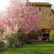 Agriturismo in Toscana