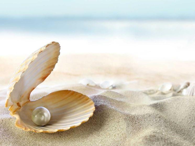 Perla in conchiglia