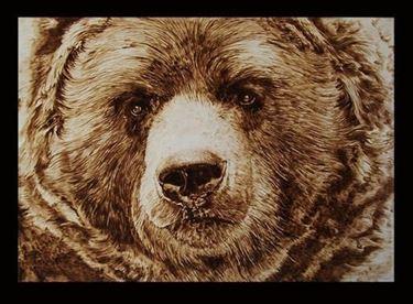 Immagine orso pirografato