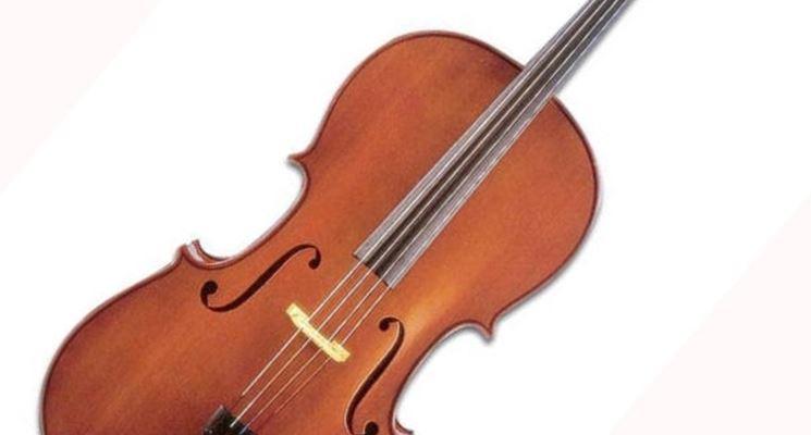 Violino in legno di ciliegio