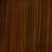 legno noce