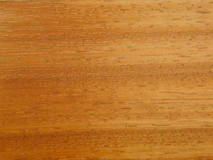 Caratteristiche legno iroko - Lavorare il Legno - Legno iroko