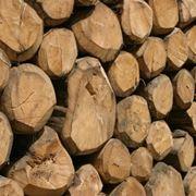 pezzi di legno da stufa