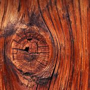 legno di castagno