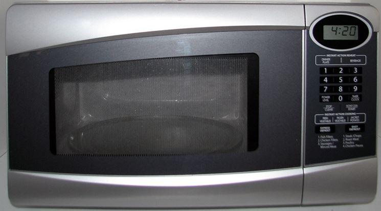 Immagine di un classico forno a microonde
