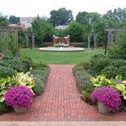 giardino con pavimentazione ruvida
