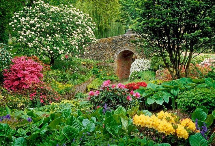 coesistenza tra piante di diverse specie