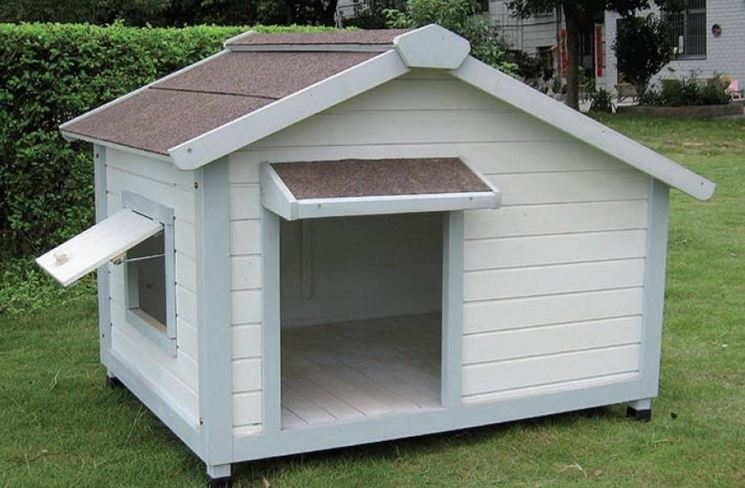 casetta per cani con finestra