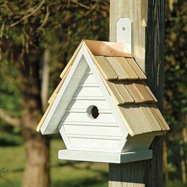 Casetta per uccelli fissata su supporto