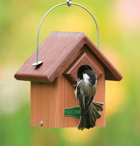Preferenza Come costruire casette per uccelli - Casette per giardino  BX67