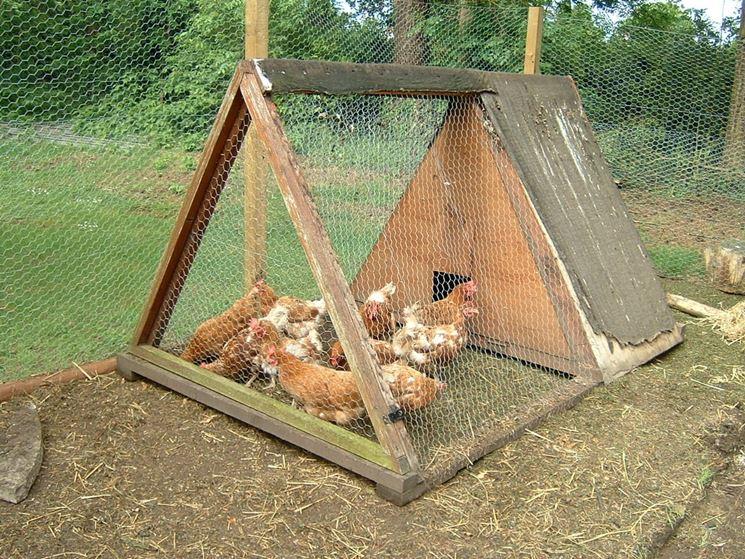 Come realizzare un pollaio fai da te casette per for Casetta giardino fai da te