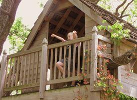 Costruire la casa sull' albero