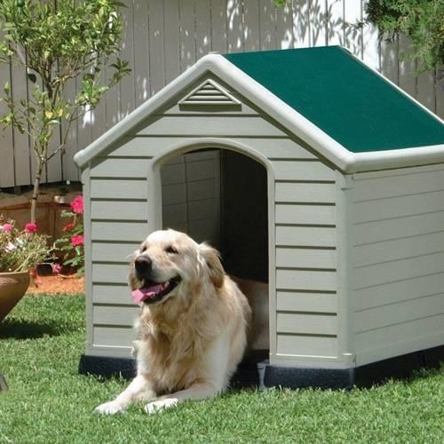 Costruire una cuccia per cani casette per giardino - Giardino per cani ...