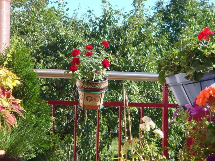 Vaso decorativo in ceramica ideale per i fiori che non richiedono troppa umidità
