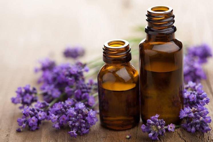 Olio essenziale di lavanda dalle propriet� terapeutiche