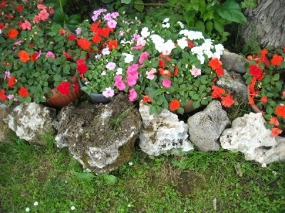 Come realizzare giardini rocciosi fai da te fare for Giardini fai da te foto