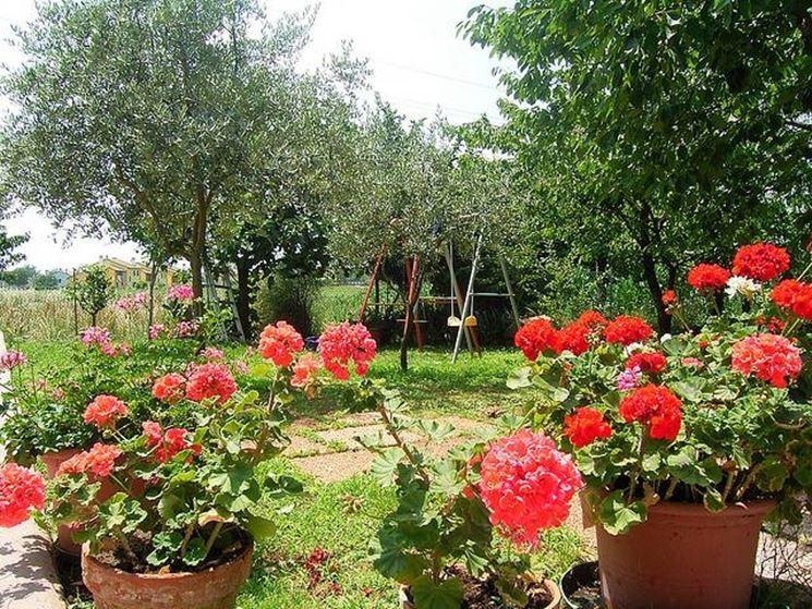 Giardino fai da te fare giardinaggio come realizzare - Aiuole giardino fai da te ...