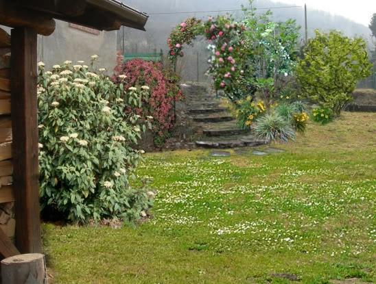 Idee giardino fai da te fare giardinaggio le for Idee in giardino