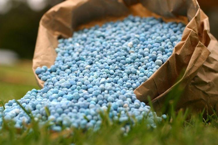 Un fertilizzante sintetico