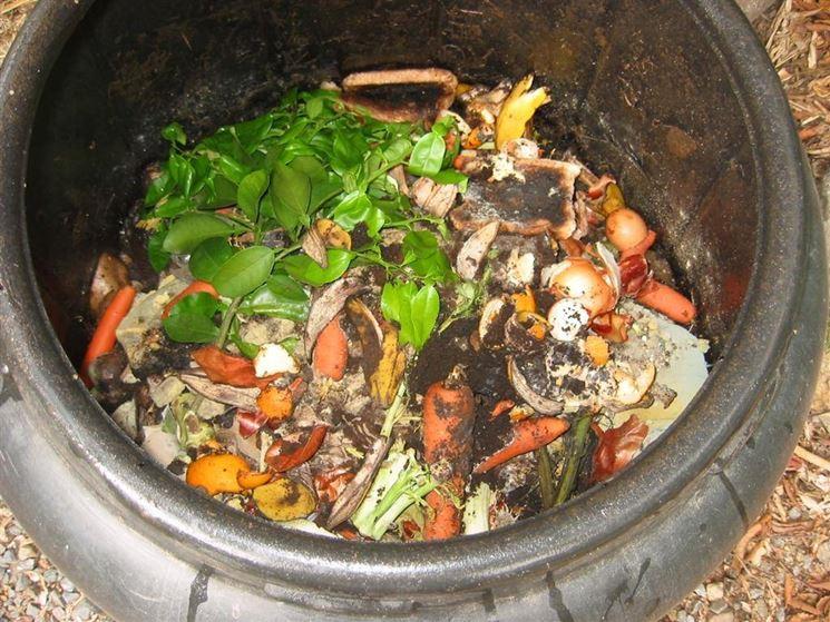 Esempio di contenitore per compostaggio
