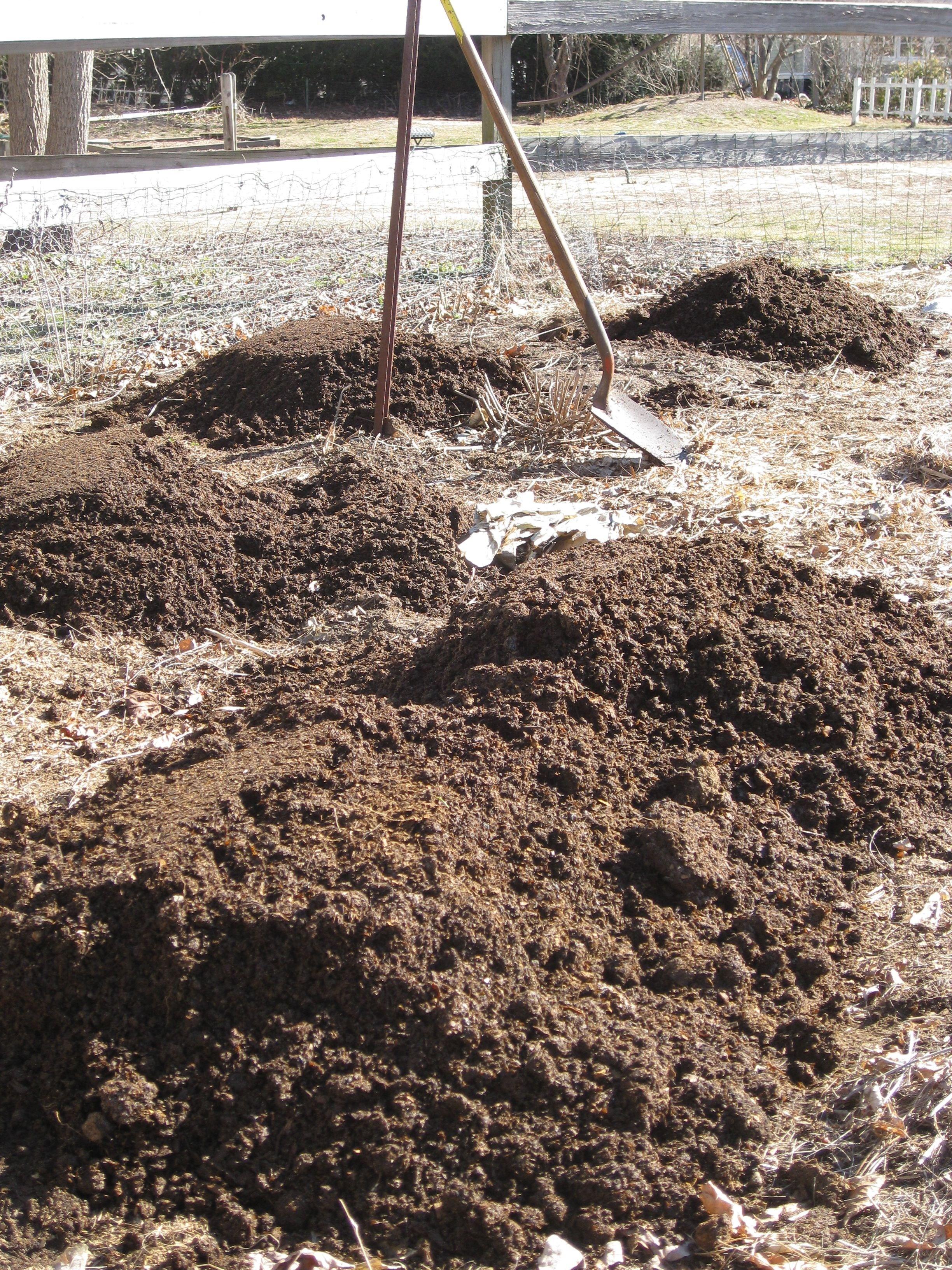 Sistemare un terreno argilloso fare giardinaggio - Sistemare un giardino ...