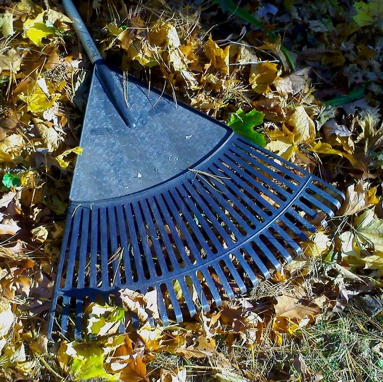 I prodotti per giardino materiali per giardini - Allontanare i gatti dal giardino ...