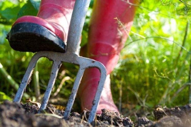 La preparazione del terreno prima della stesura dei rotoli di prato