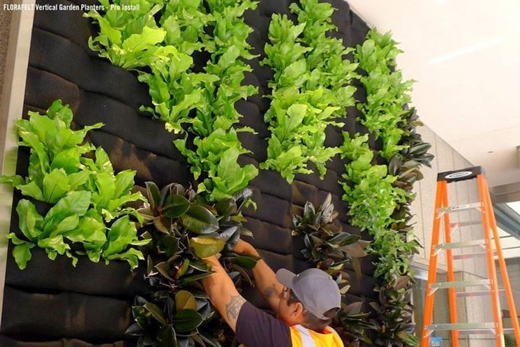 Benefici delle pareti verdi - quale giardino - Pareti verdi: bellezza ed eco-sostenibilità