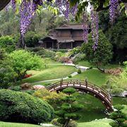 giardino giappo