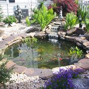 Bellissimo giardino acquatico casalingo