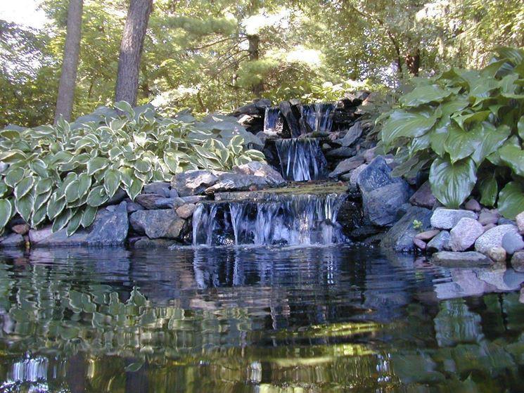 Giardino d'acqua completamente naturale