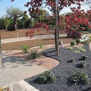 Esempio di pacciamatura su un'aiuola. Fonte: www.green-garden.net.