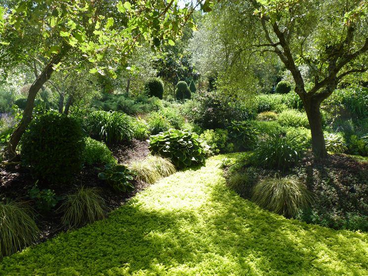 Soluzioni per giardino quale giardino le principali for Soluzioni giardino