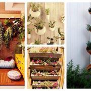 pareti vaso giardino verticale