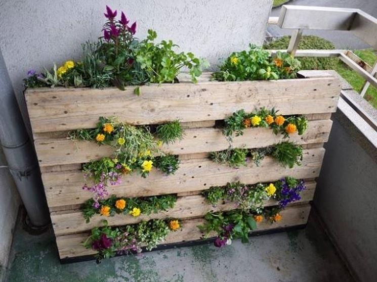 giardino verticale vasi