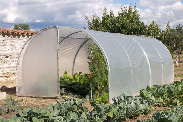 Costruire serre per ortaggi serre da giardino come - Serre da giardino usate ...