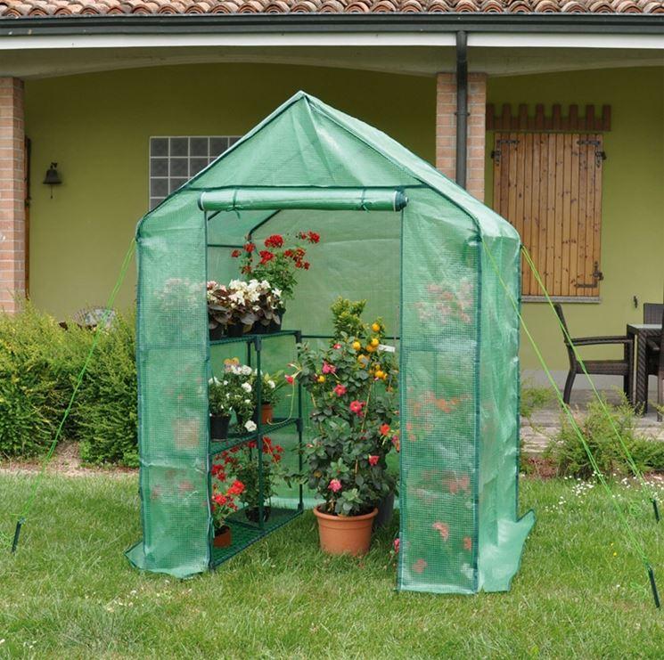 Prezzo piccole serre serre da giardino come valutare for Piante leroy merlin