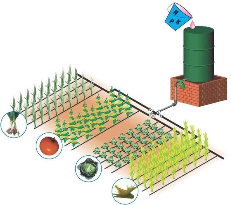 Irrigazione a goccia gli impianti idraulici come for Progetto irrigazione