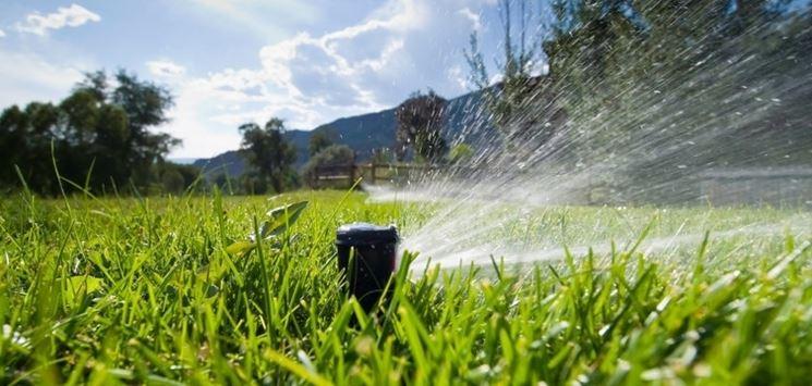 Uno sprinkler in funzione