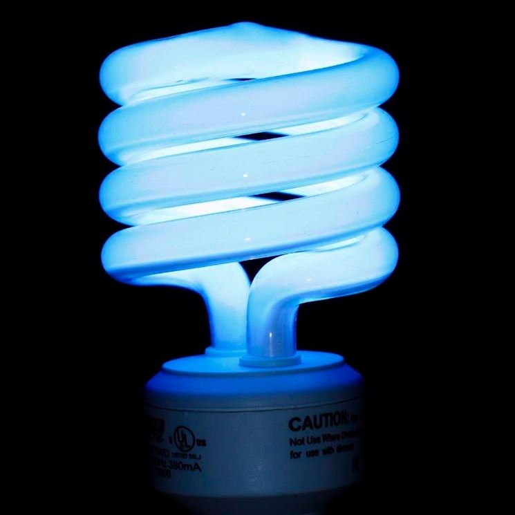 Diversi tipi di lampadine fluorescenti