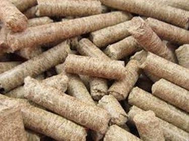 Ecocombustibile per stufe : il pellet