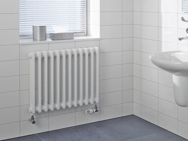Costo termosifoni in acciaio - Riscaldamento per la Casa - Prezzo ...