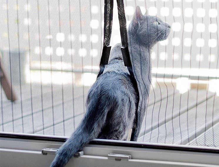 Quali sono le migliori zanzariere le finestre guida - Amazon zanzariere per finestre ...