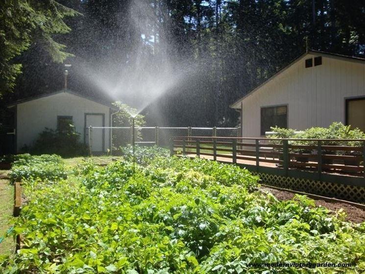 Esempio di irrigazione dell'orto.