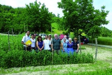 coltivazione di piselli in terra