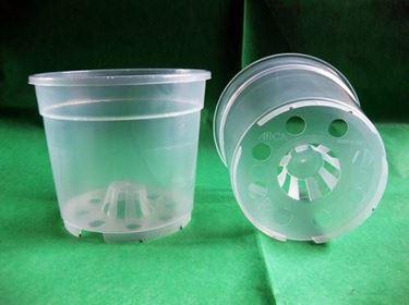 vaso trasparente buchi