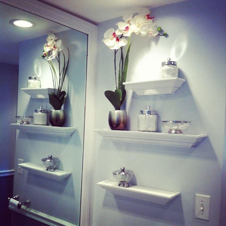 orchidea in bagno