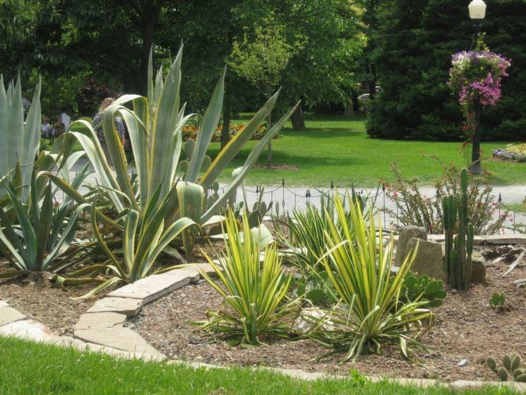 Fiori e piante - Cura Piante Appartamento - Come creare unaiuola di fior...